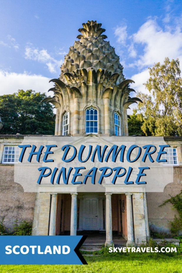 The Dunmore Pineapple Pin