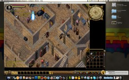 Ultima Online: The Kingdom Reborn