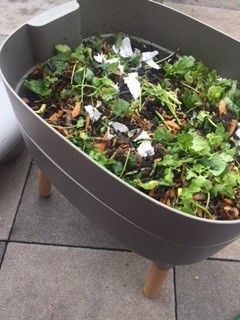Vermicomposting with the Urbalive worm farm