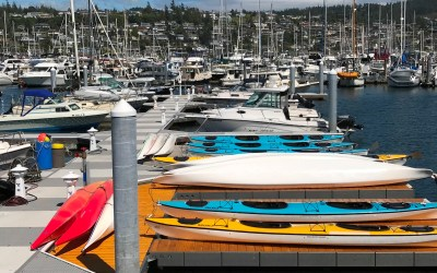 Summer News at Skyline Marina!