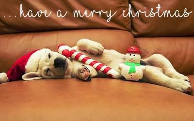 Holiday Closure Reminder!