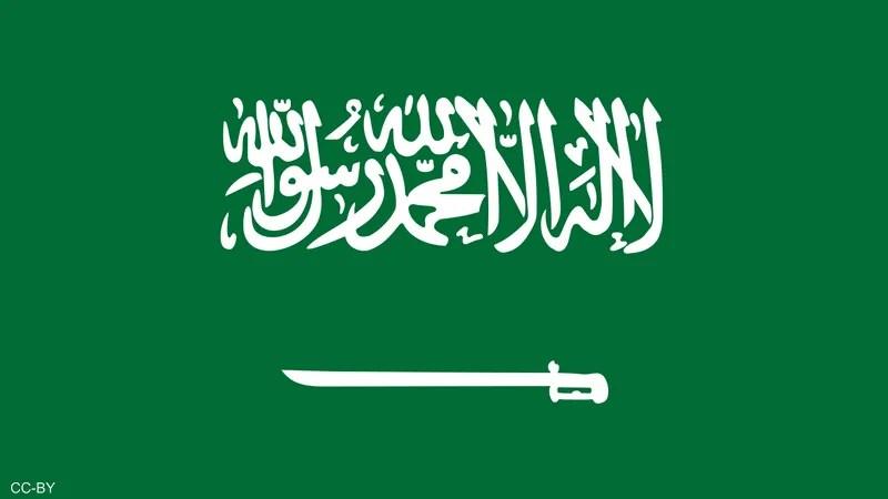 السعودية تفاصيل قرار استحصال رسوم المرافقين أخبار سكاي نيوز عربية