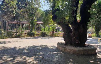 Παρεμβάσεις για την ανάδειξη και αξιοποίηση του πάρκου του Θέρμαι
