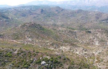 Τουριστικές επιχειρήσεις θα φροντίζουν 2.000 στρέμματα  δάσους και κομμένες εκτάσεις για 10 έτη