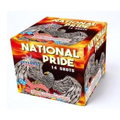 National Pride fireworks