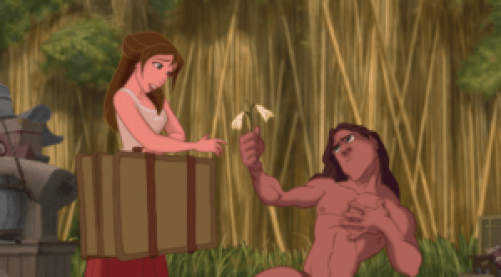 Tarzan – Skyway to Wonderland