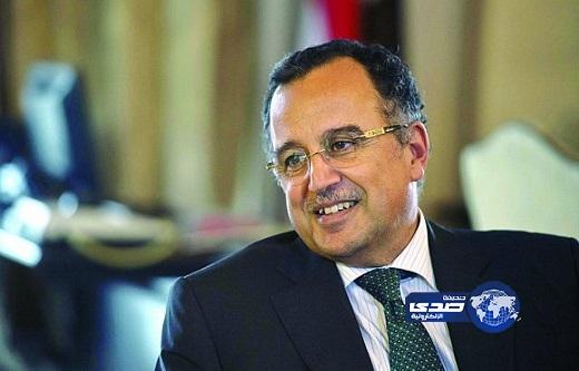 الخارجية المصرية: القاهرة ترفض تدويل الأزمة المصرية
