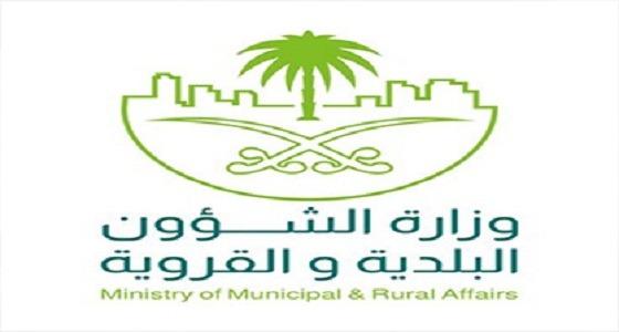 """"""" الشؤون البلدية """" : طرح المشروعات للخصخصة سيبدأ العام الجاري"""