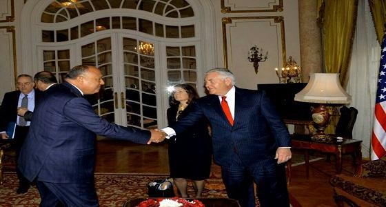 وزير الخارجية المصري: نسعى لحل النزعات في المنطقة بالوسائل السلمية