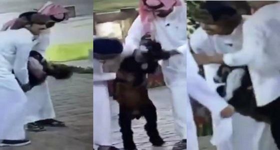 """"""" تيس """" يرقص الدحة.. قناة بداية تسيء لقبيلة عنزة وتكشف موقفها"""