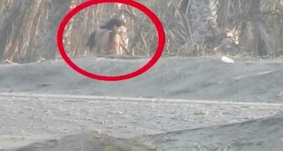 بالفيديو.. تبادل لإطلاق الناربين القوات المشتركة باليمن وحوثيين أثناء محاولة تسلل