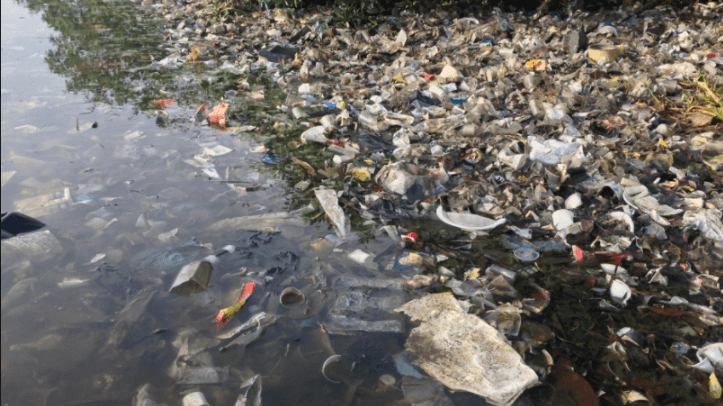 Plastic and polystyrene pollution