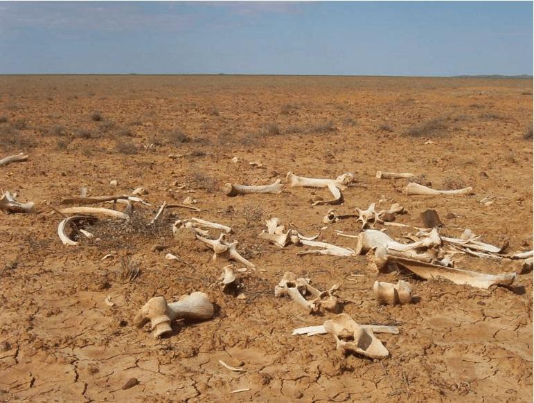 Global Warming in Australia