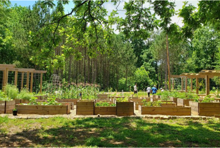 Community Food Forests