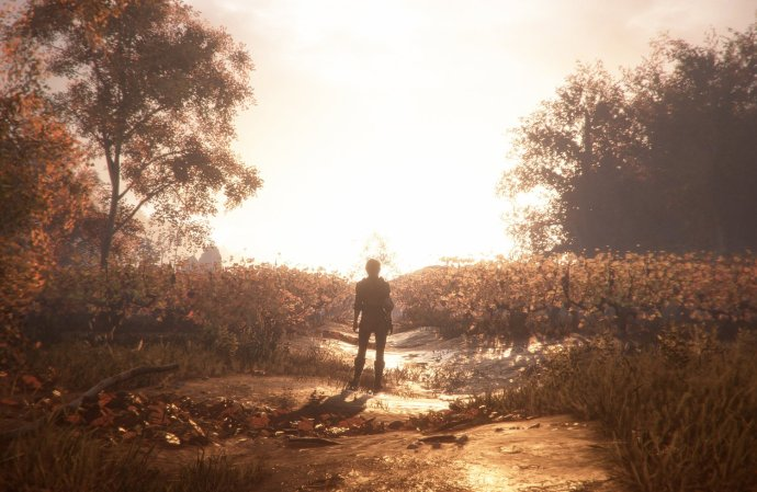 Image result for A Plague Tale: Innocence plot