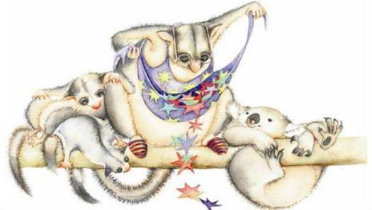 possum magic apron and stars