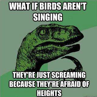 What if birds aren't singing