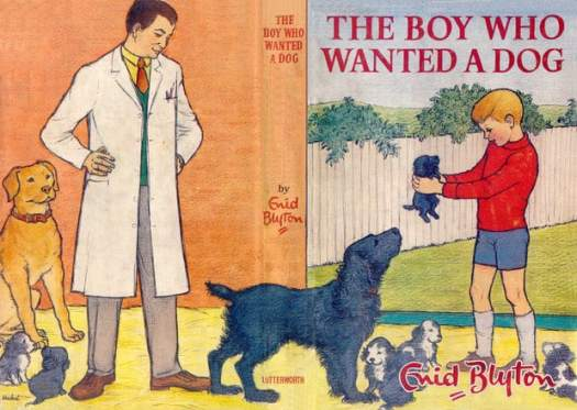 The Boy Who Wanted A Dog