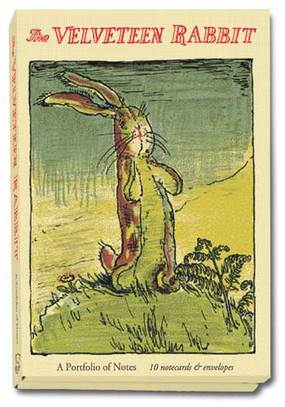 Picturebook Study The Velveteen Rabbit Slap Happy Larry