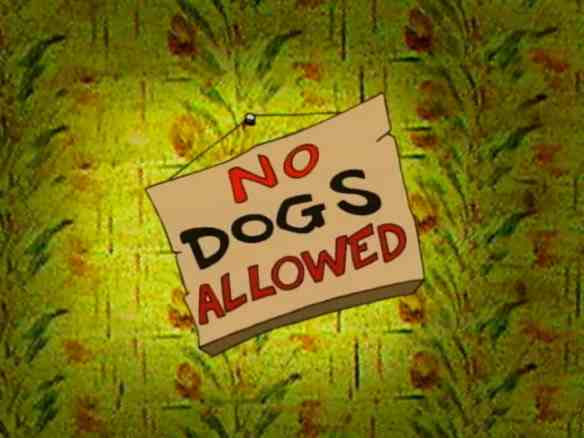 no-dogs-allowed