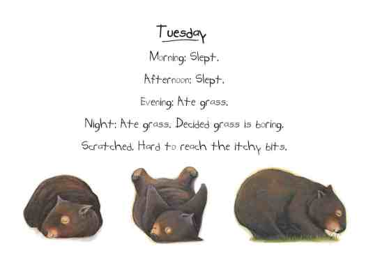 Tuesday Diary of a Wombat