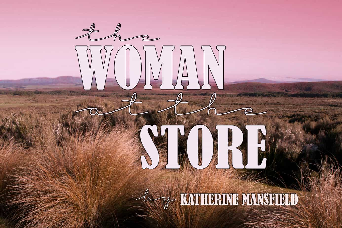 The Woman At The Store text