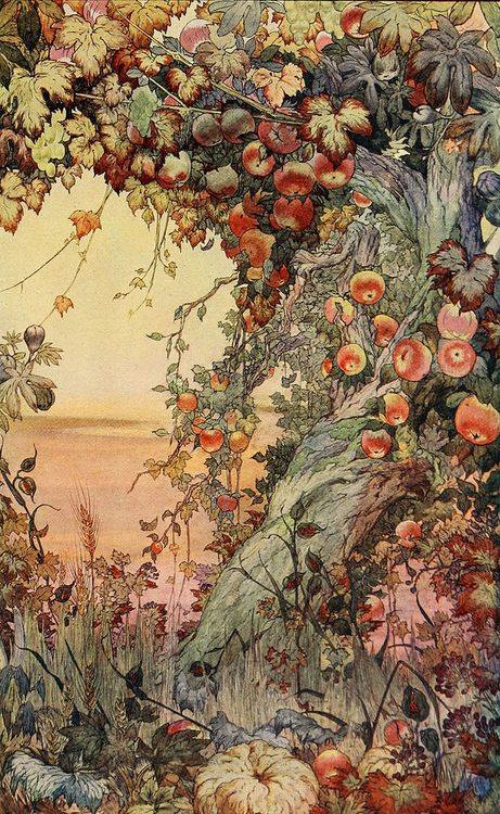 """The fruits of the earth"" 1910 ~ Edward Julius Detmold (1883-1957), illustrator of Victorian books may have influenced modern picture book illustrators such as Jill Barklem (Brambly Hedge)"