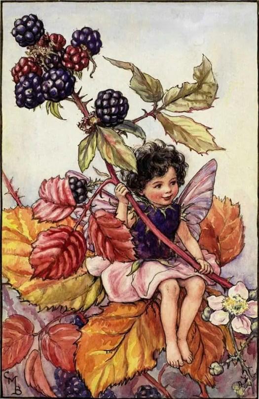 Cicely Mary Barker (1895 - 1973)  The Blackberry Fairy Flower Fairies of the Autumn