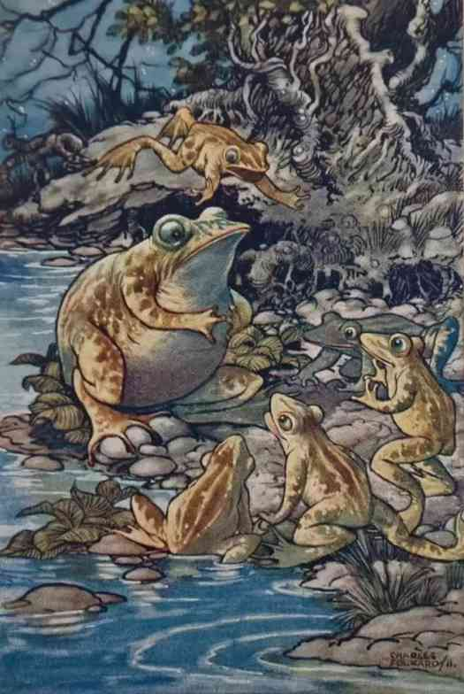 Aesop's Fables London Adam & Charles Black 1912 Artist - Charles Folkard - The Proud Frog