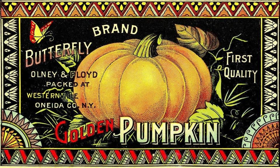 An old crate label for canned pumpkin