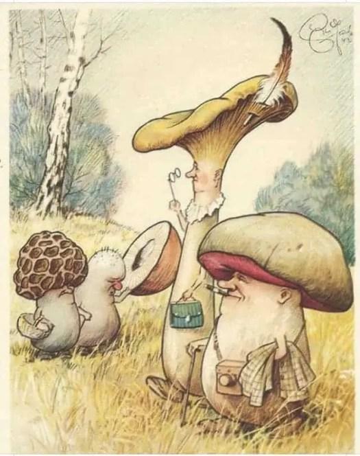 mushroom postcard by German artist Heinz Geilfus,1930s