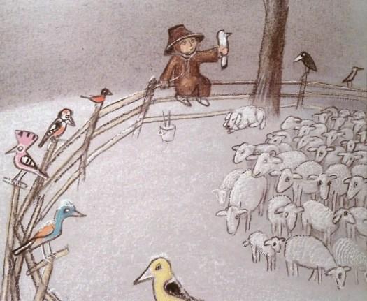 Zbigniew Rychlicki birds sheep