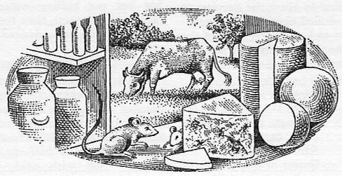 Good Housekeeping's Cookery Book Illustrations By Fred Reeves and Douglas Woodall, Ebury Press London 1948 peephole cow