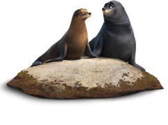 Finding Dory - Rudder and Fluke the sea lions