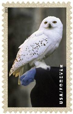 Harry Potter Stamp 5