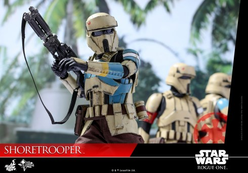 Shoretrooper Rogue One Hot Toys Figure