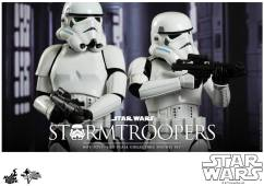 Hot Toys Storm Troopers 2