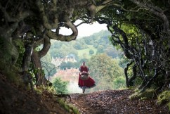 Into the Woods (7)