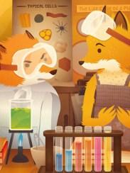 Philip Tseng - Mr. Fox