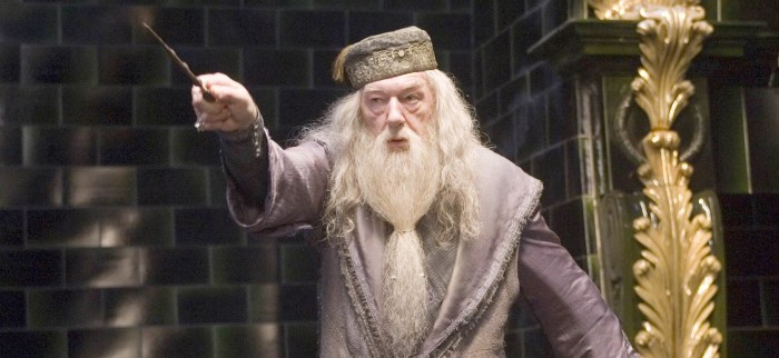 Who Should Play Young Albus Dumbledore
