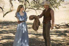 westworld dissonance theory jimmi simpson evan rachel wood