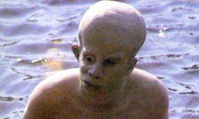 Ari Lehman as Young Jason Voorhees