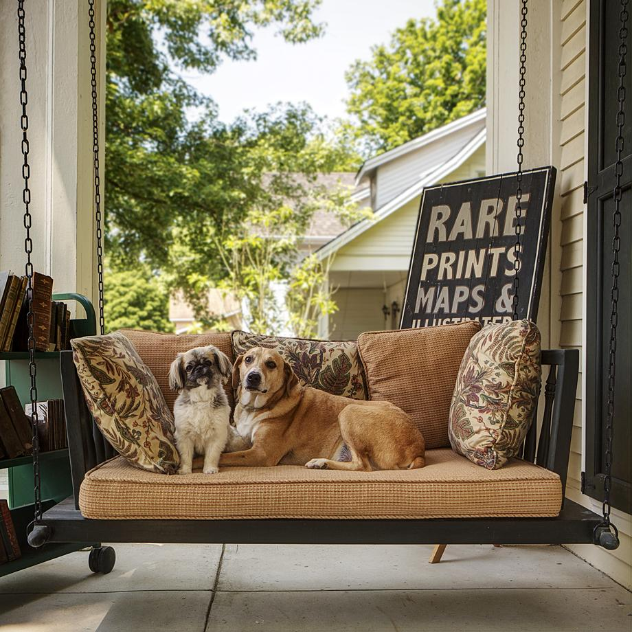 PORCH DOGS