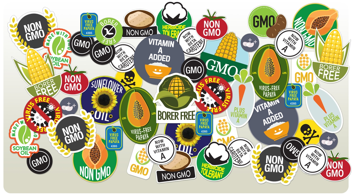Image result for GMO is good