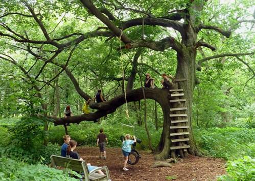 https://i2.wp.com/www.slate.com/content/dam/slate/articles/health_and_science/science/2014/05/140522_SCI_KidsNature_tree.jpg.CROP.original-original.jpg?resize=499%2C356