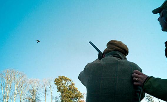 A man shooting a bird.