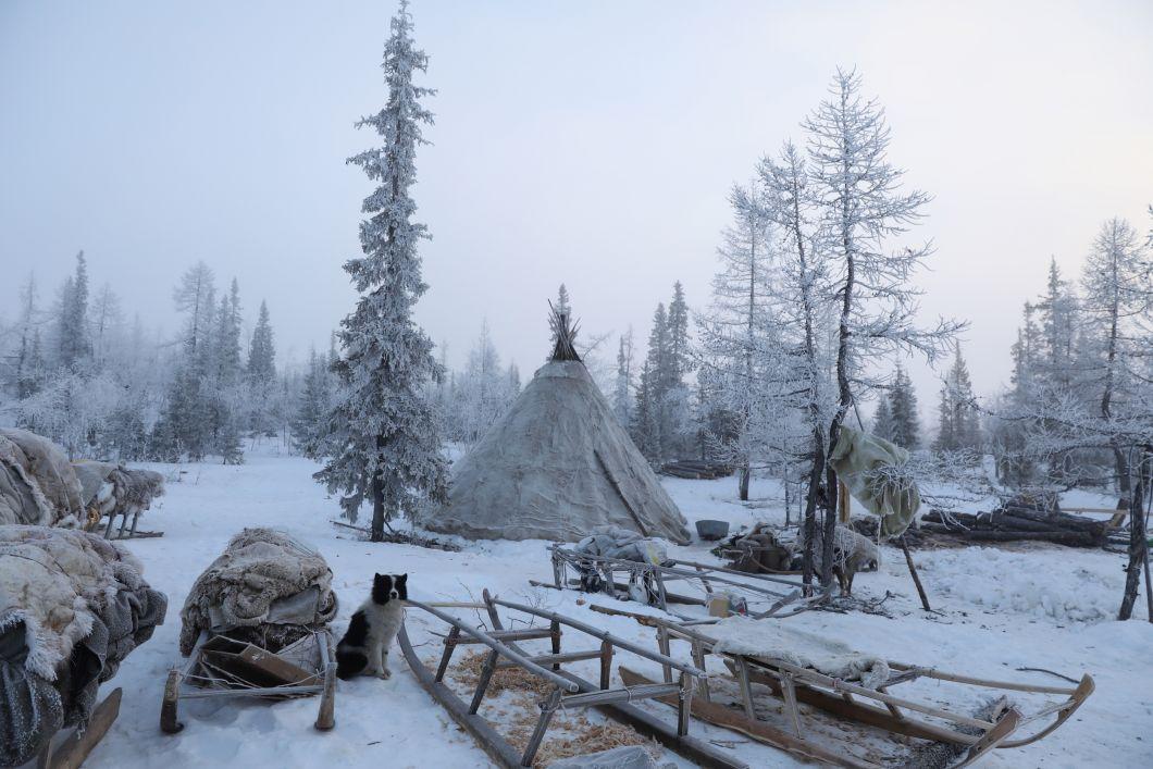 «Mon dernier voyage m'a conduit au village reculé de Yar-Sale, dans le nord de la Sibérie. Je suis allé à la rencontre d'un groupe de femmes âgées, qui faisaient autrefois partie d'une communauté nomade d'éleveurs de rennes nommée Nénètses. Aujourd'hui, à un âge avancé, les femmes passent la majeure partie de leurs journées dans la solitude, isolées de la nature et de leur communauté migrante. Je me demandais: que ressent-on pour quelque chose qui a disparu depuis longtemps, comme votre communauté et votre ancienne maison?»