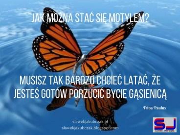 zostać motylem zmiany dzięki mlm