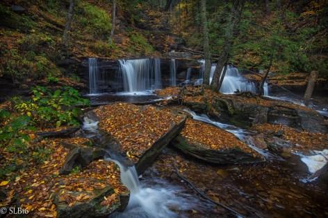 Delaware Falls, Waterfall, Ricketts Glen