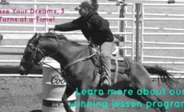 2015 Goals for SL Barrel Horses